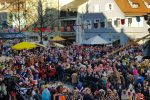 Narrentreffen Offenburg 2019